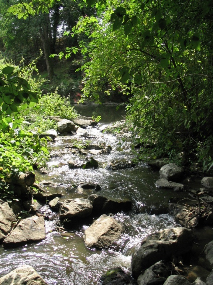 Restaurer les cours d'eau et les berges