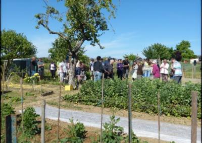 Jardiniers amateurs: les « Bouts de jardins »