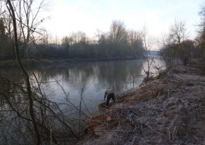 Abattage des peupliers sur les rives du LOUET